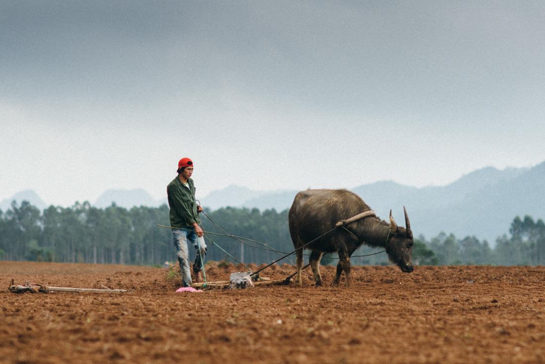 vietnam-stilpirat-fotoreise-8