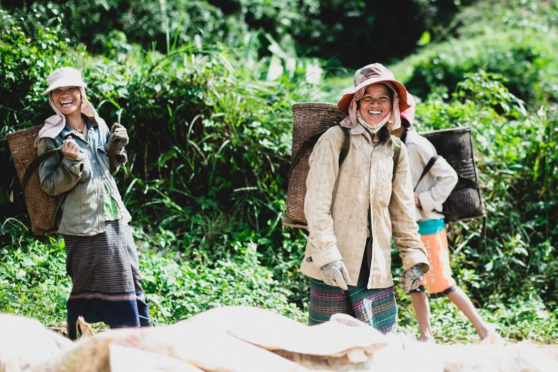 vietnam_stilpirat-20-8