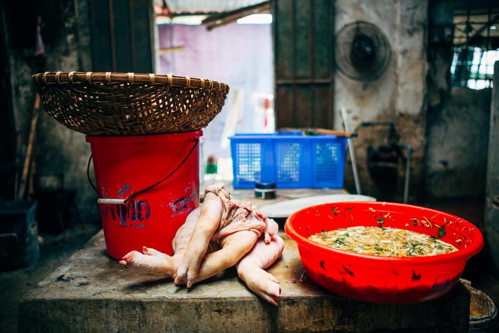 abenteuer_vietnam_tanja_2 (11)