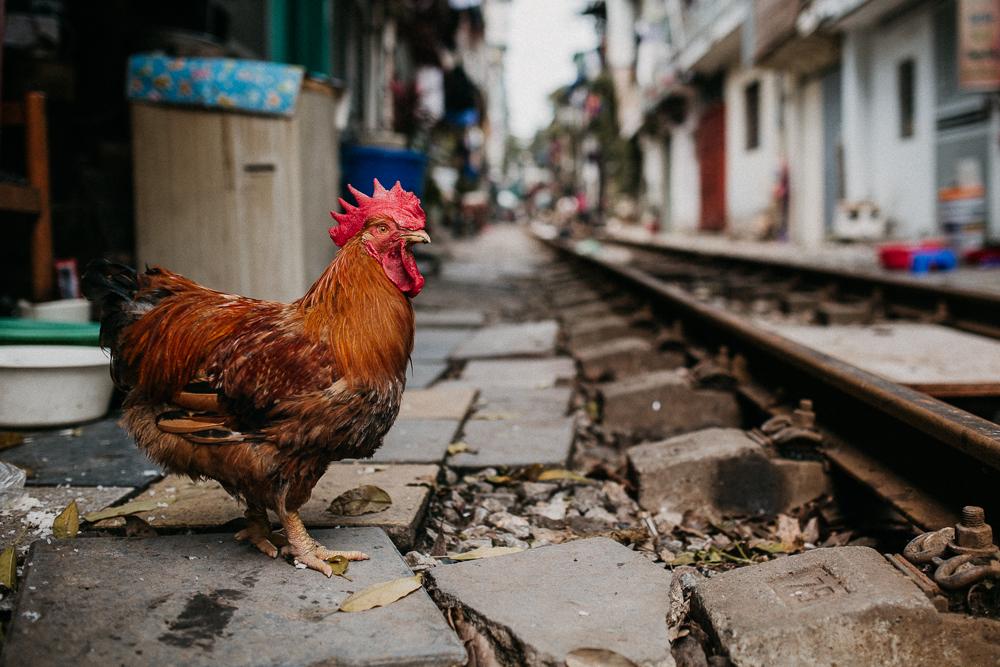 Abenteuer_Vietnam_Tourblog_Yannick_Hanoi_026