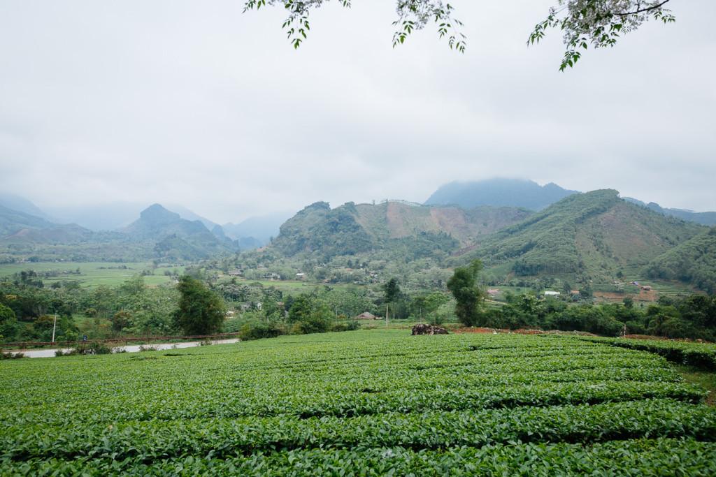 Vietnam-Marc-160405-0528