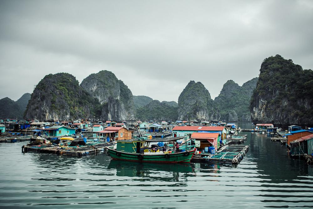Vietnam_81